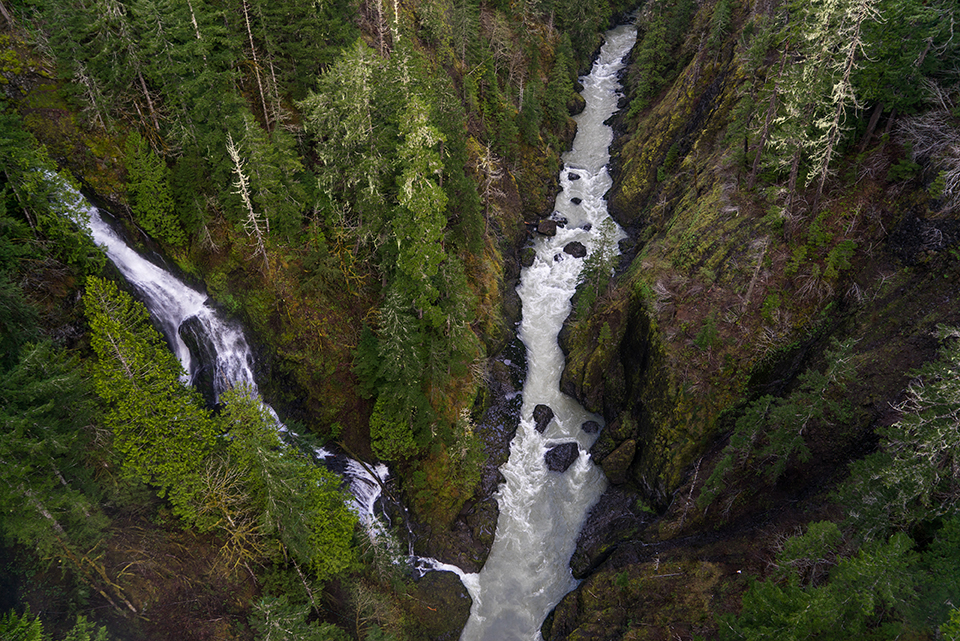 Vincent Creek Falls plunges into the South Fork Skokomish River