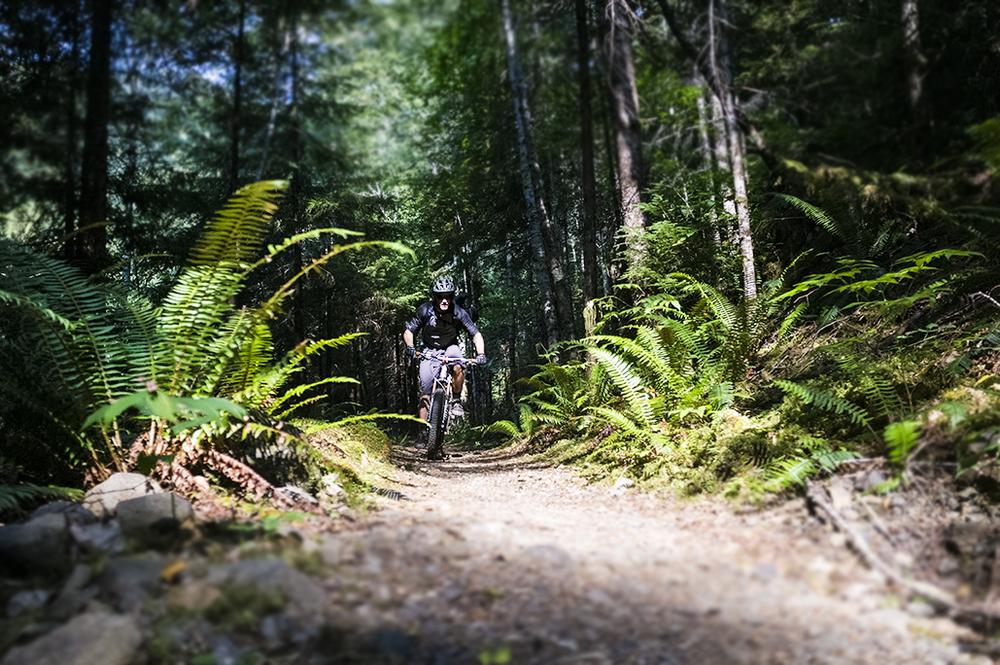 explore-hood-canal-weekend-warrior-biking.jpg