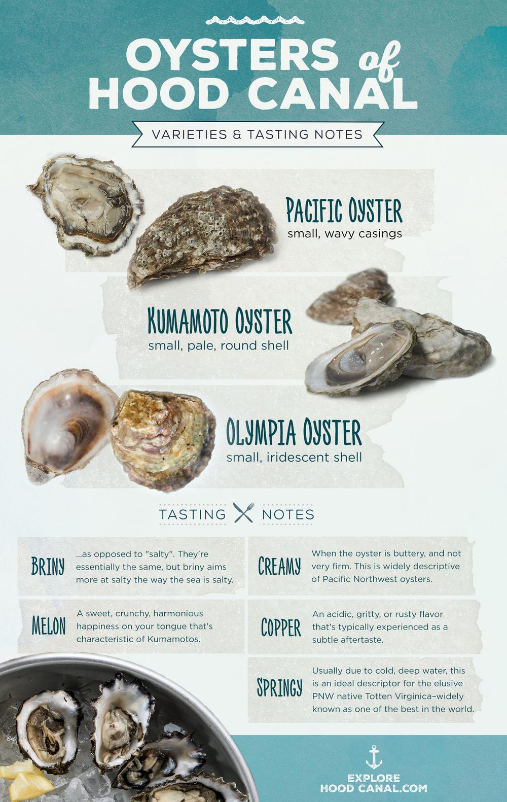 explore-hood-canal-oyster-shelton-wa