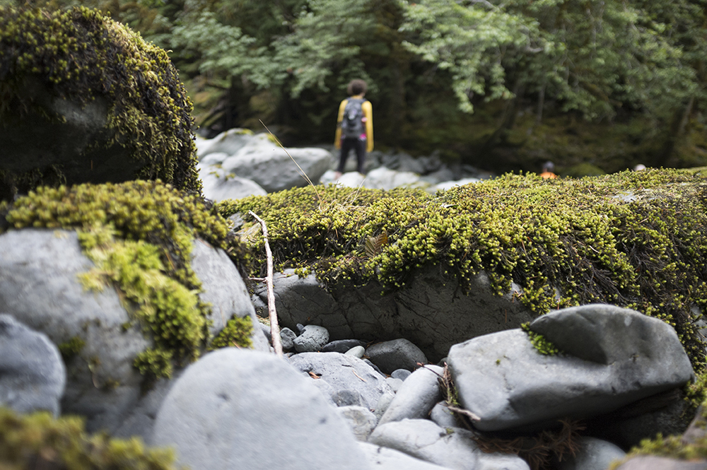explore-hood-canal-winter-hiking.jpg
