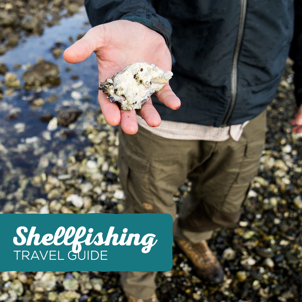 explore-hood-canal-shellfishing