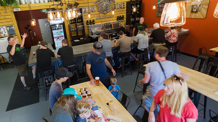 explore-hood-canal-bent-bine-brewing