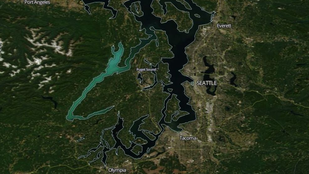 A NASA MODIS satellite image showing the teal-colored Hood Canal as a 2017 plankton bloom covers the Canal a harmless but tropic aquamarine. (Photo: NASA/MODIS)