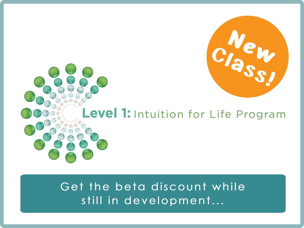 Level 1 Beta Program.jpg