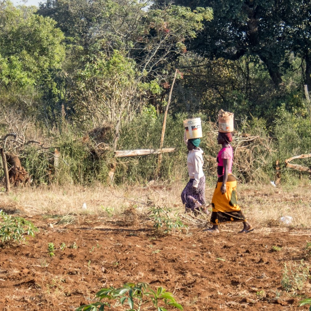 It always amazes me how they can carry heavy loads on their heads. Here are two of the young women carrying buckets full of items to and from the fields