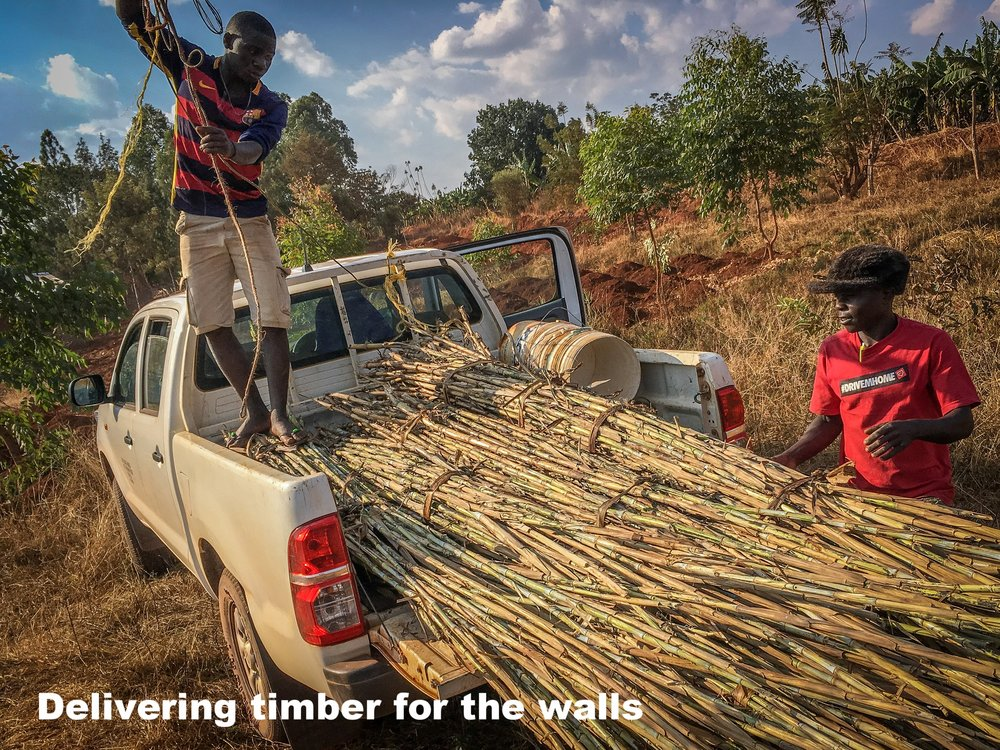 2. Wall timber being delivered.jpg