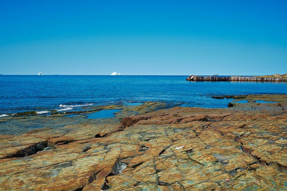 Icebergs in Bonavista Bay