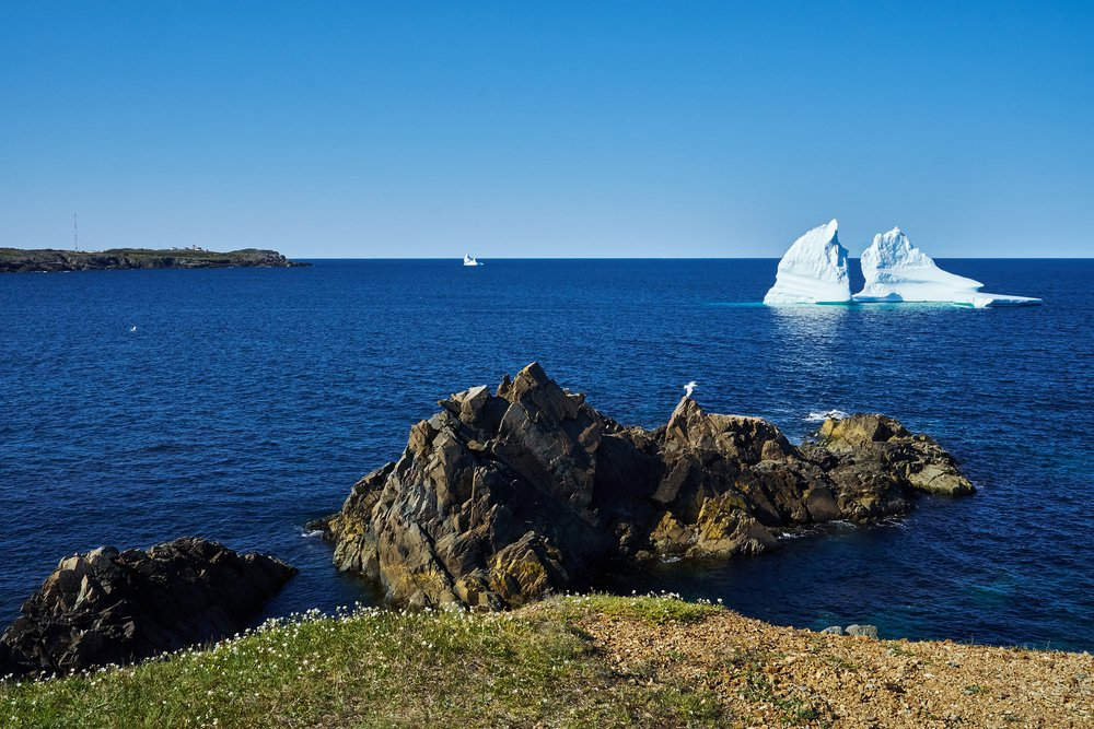 'Small' Icebergs near Cape Bonavista