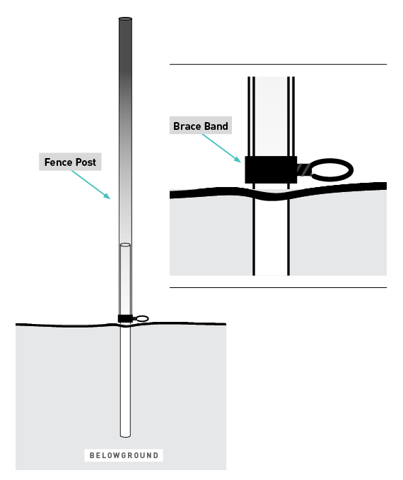 deer fence height diagram by The Benner Deer Fence Company