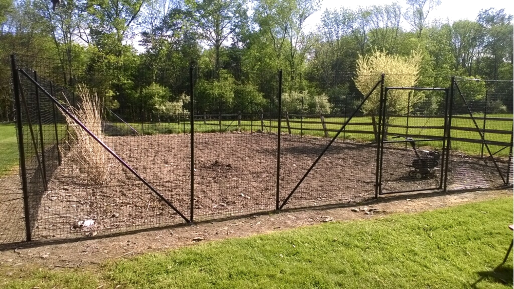 Garden Fence installation–after 6 hours of hard work.