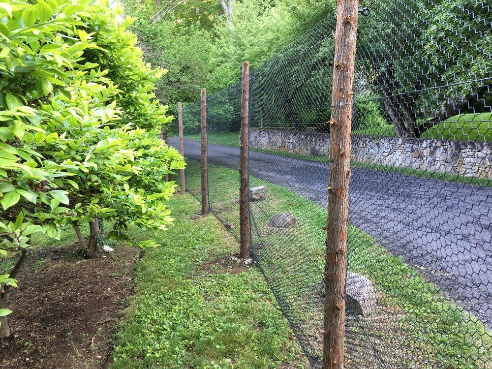 deer fence metal mesh on cedar posts