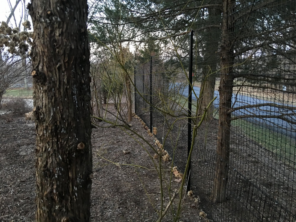 7 foot high perimeter deer fence