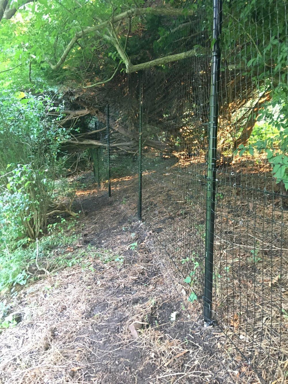 deer fence along hillside