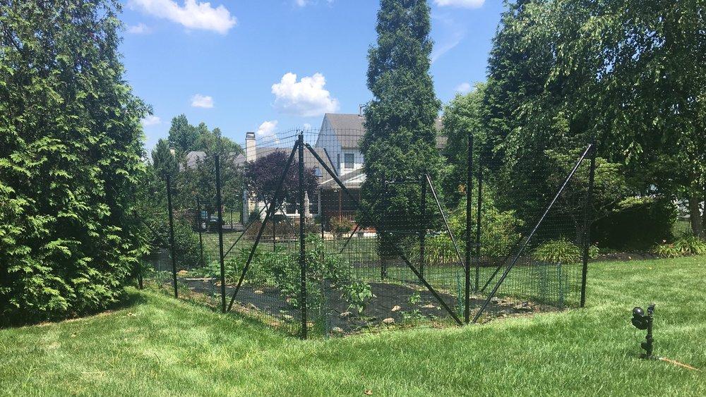 Garden Fence Deer Fence.JPG