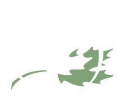 Green Burial Society of Canada