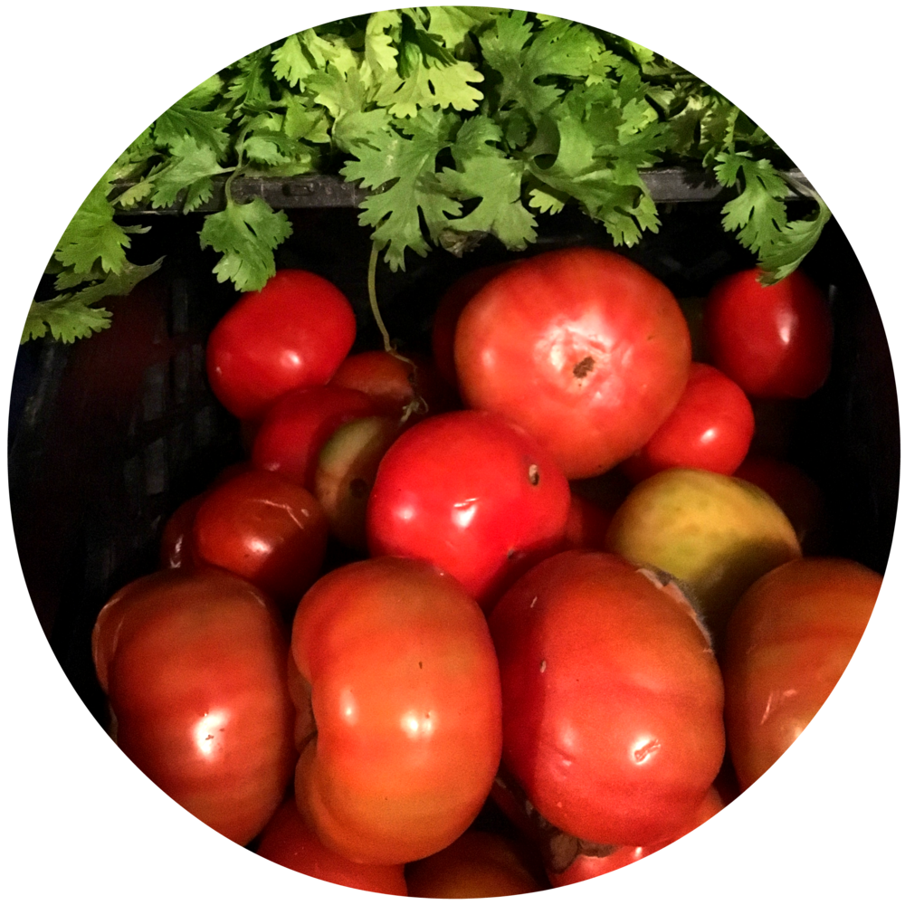 1 (tomato).png
