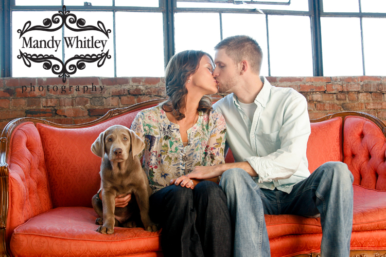 Dog Photographer in Nashville