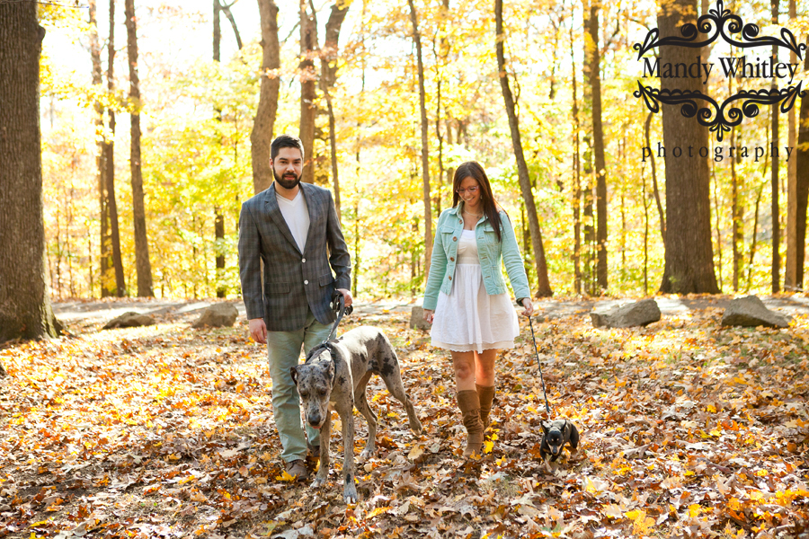 Nashville Family with Dogs Photography