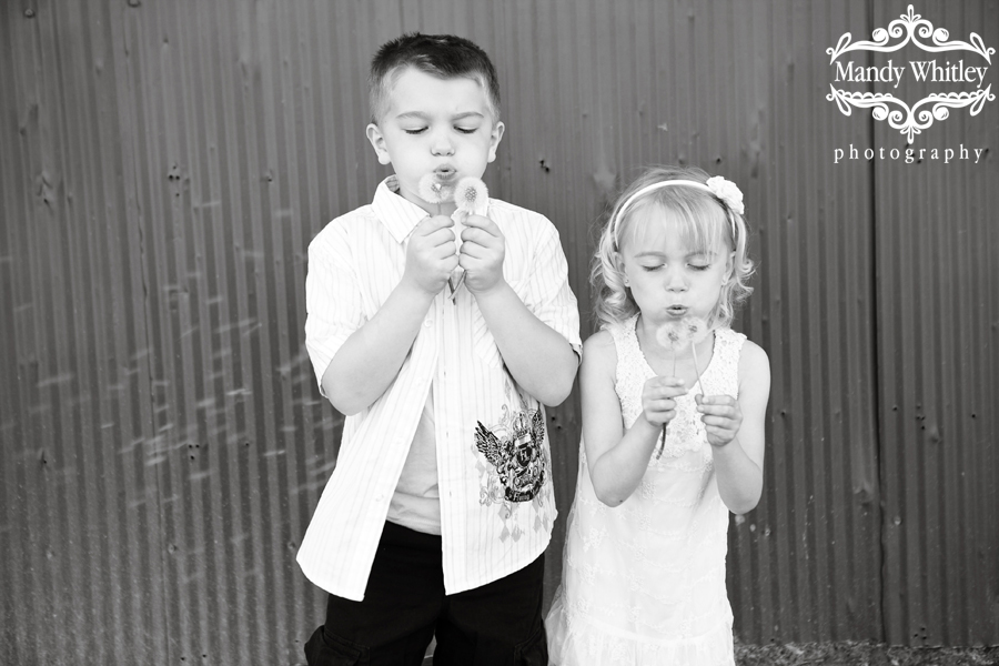 Nashville Child Photographer-MandyWhitley