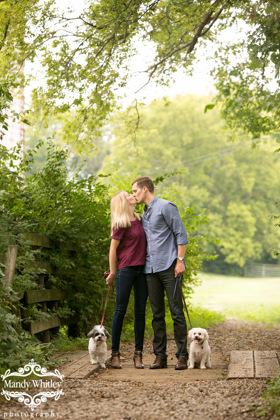 Nashville Dog Lifestyle Photographer