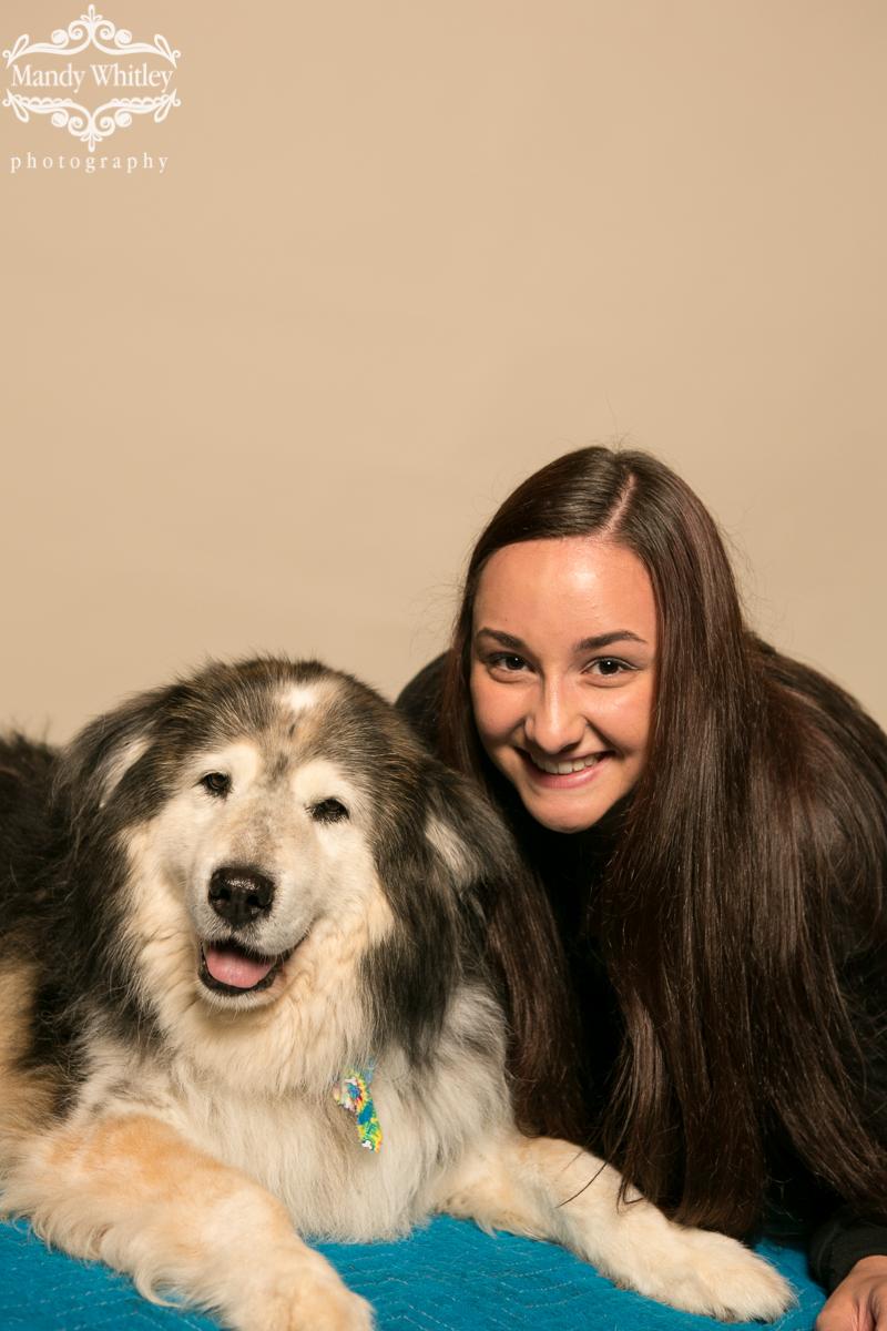 Senior Dog Sanctuary pet photographer in nashville
