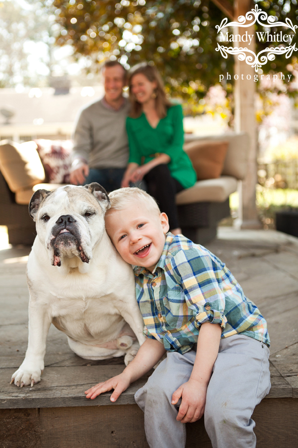 franklin tn pet and family photographer