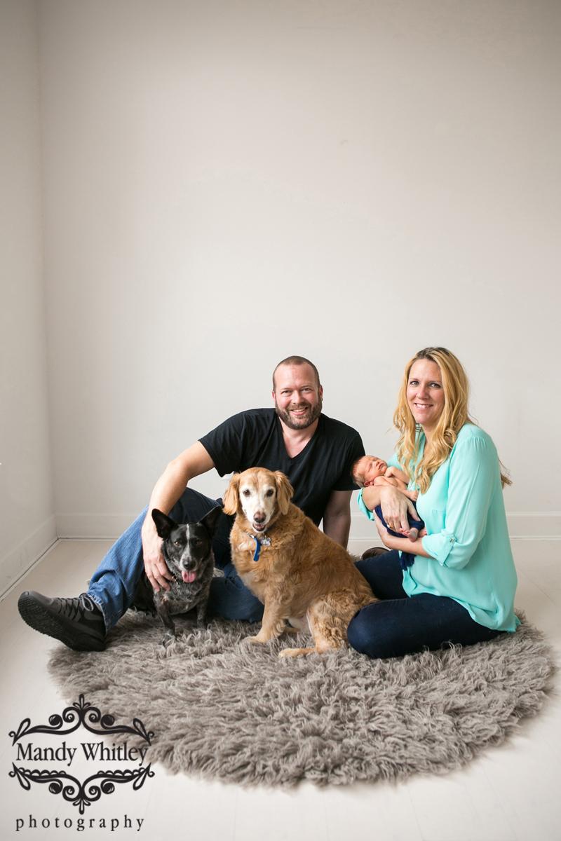 Nashville Pet Photography