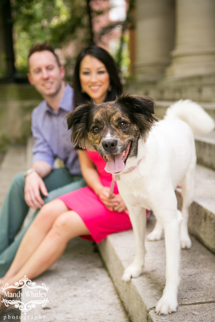 Nashville Pet Engagement Session