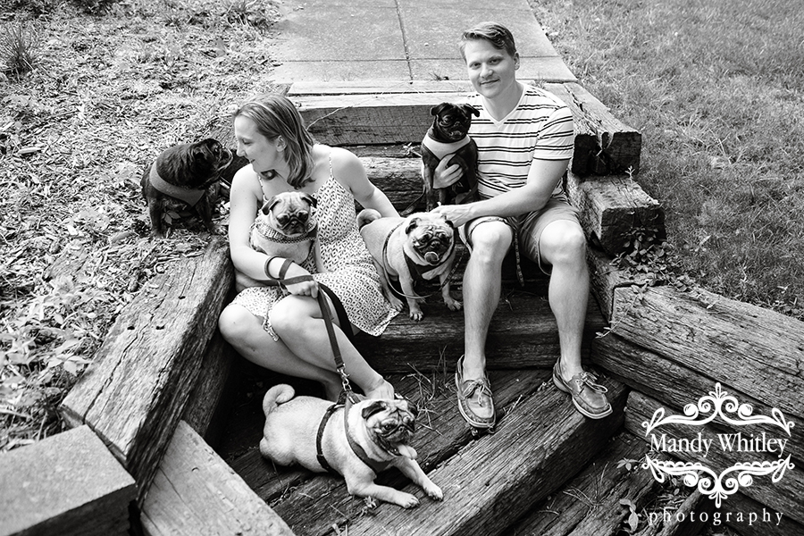 Nashville Family with Pugs Nashville Pet Photographer
