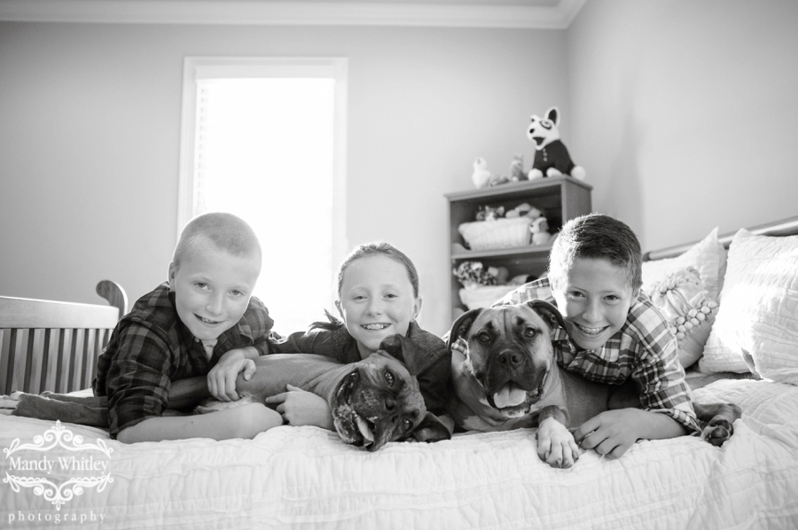 Nashville home lifestyle family and kid session with boxer dogs