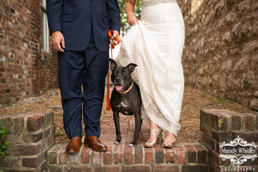 Nashville Wedding Photography at Cannery Row with Dog