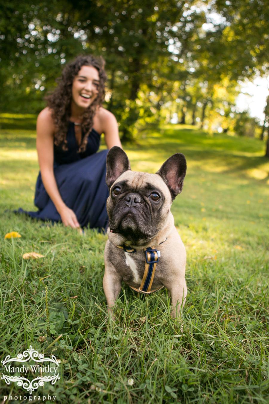 Nashville Pet Photographer Mandy Whitley Photography