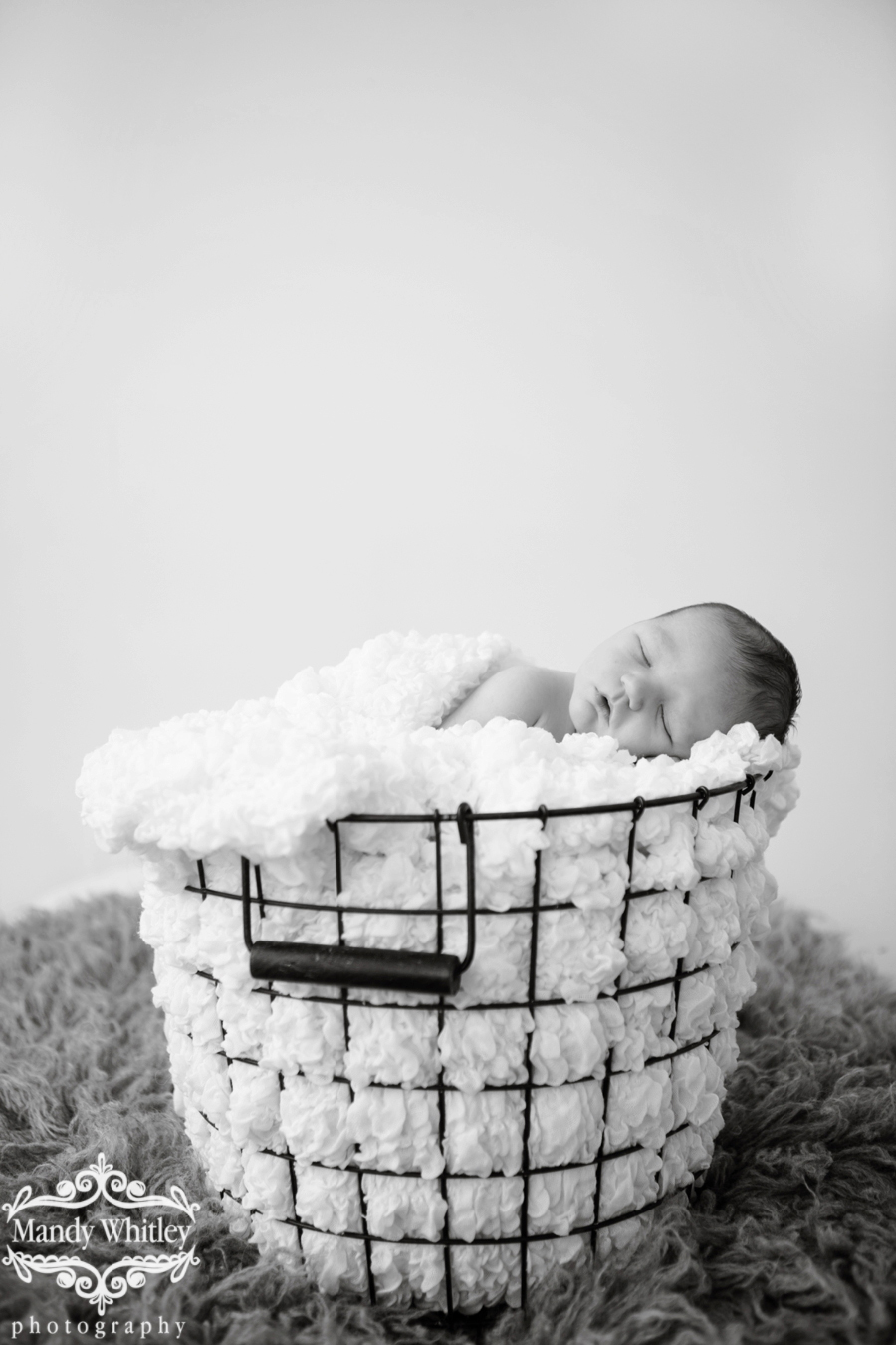 A Nashville Newborn and Family Session in Nashville Tennessee by Mandy Whitley Photography