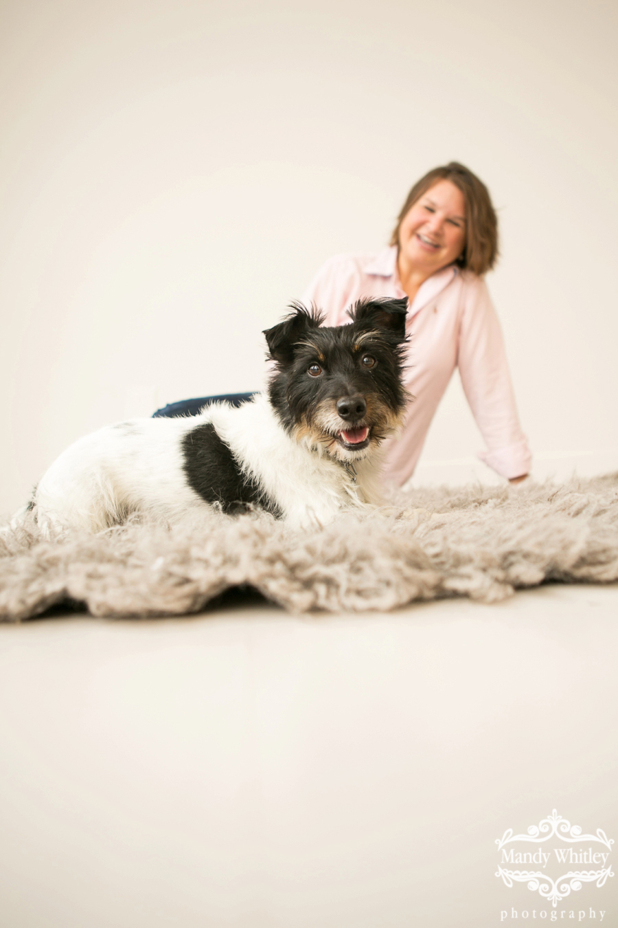 Nashville Dog and Pet Photographer