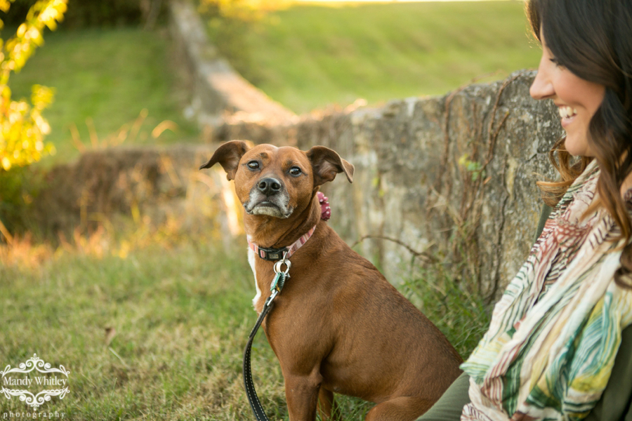 Fall inspired Nashville Pet and Portrait Session by Mandy Whitley Photography