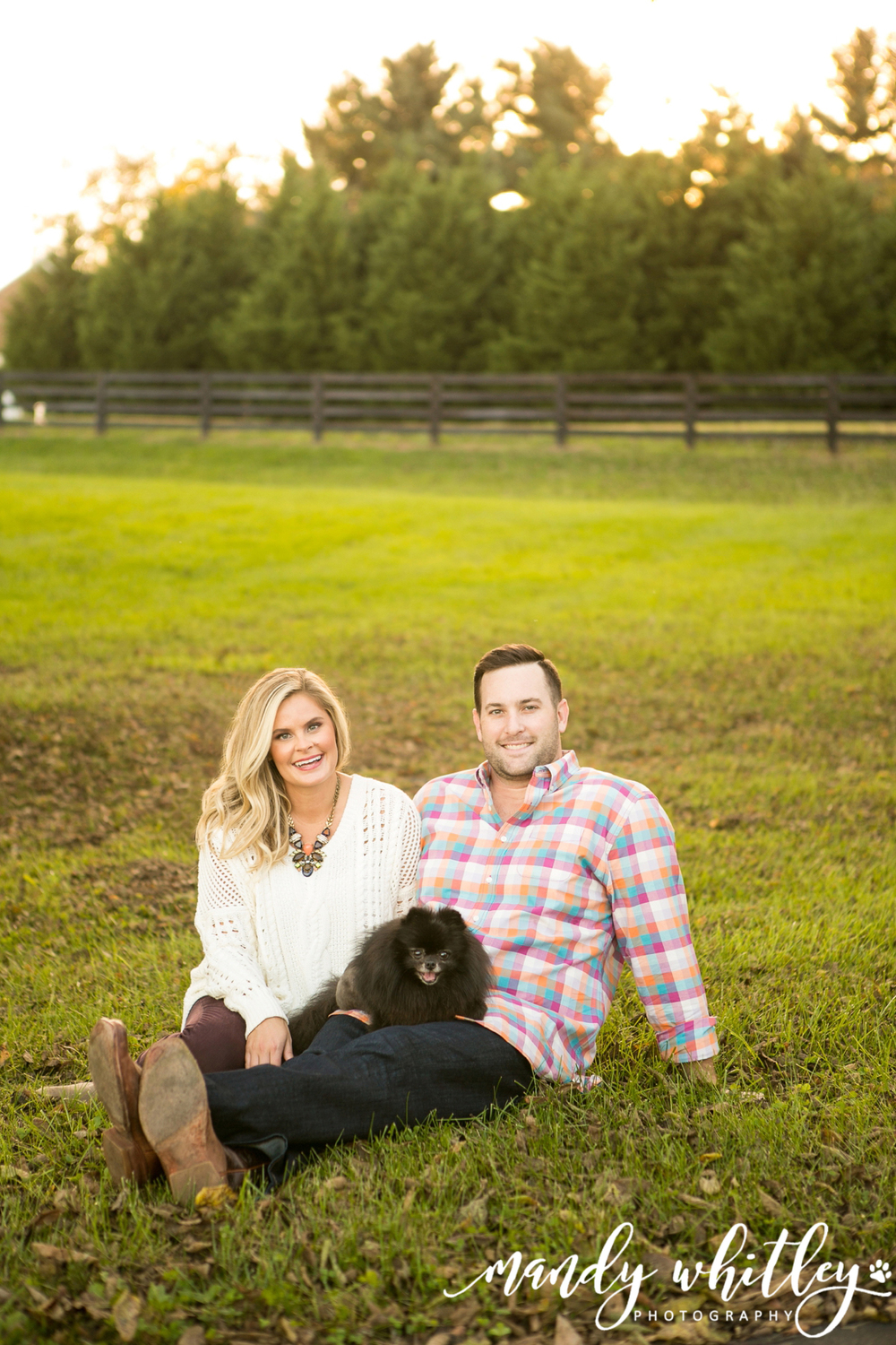 brentwood portrait and dog photographer