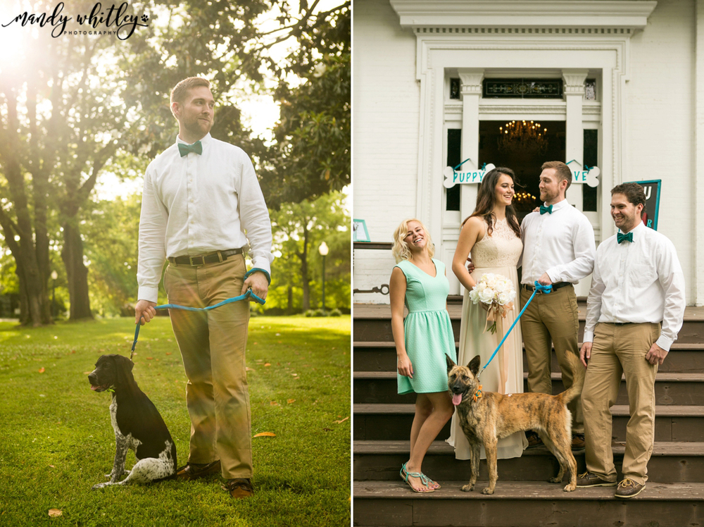 Riverwood Mansion Styled Shoot with Dogs | Mandy Whitley Photography