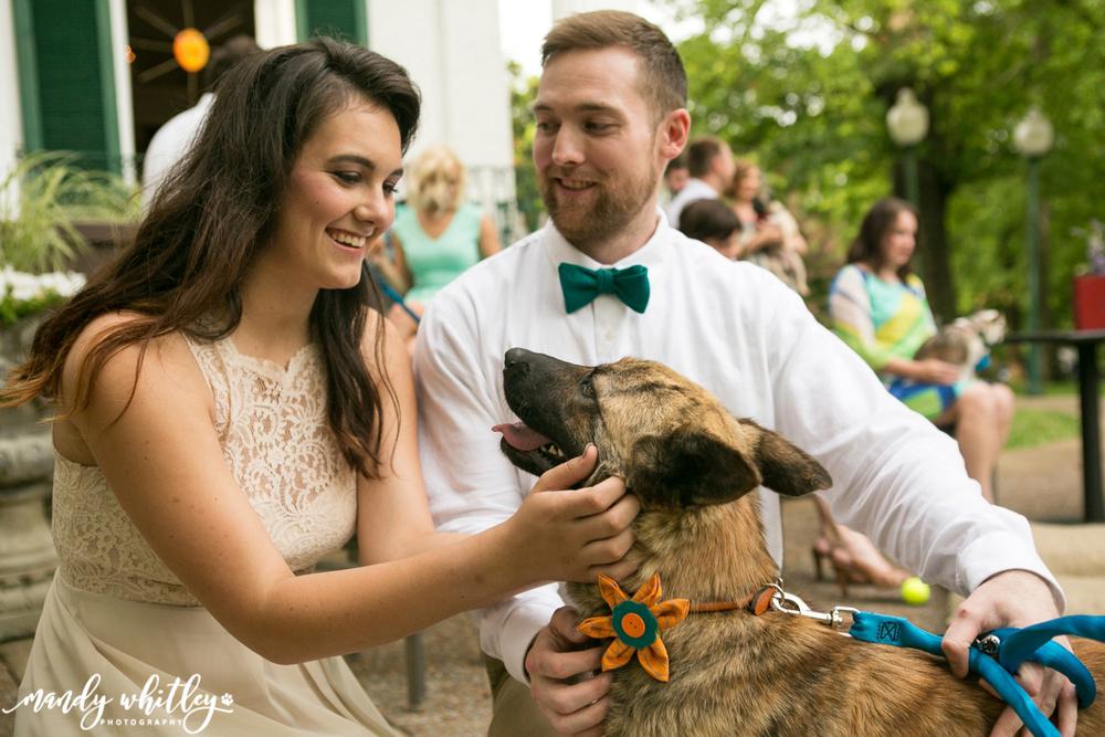 dog styled wedding photoshoot