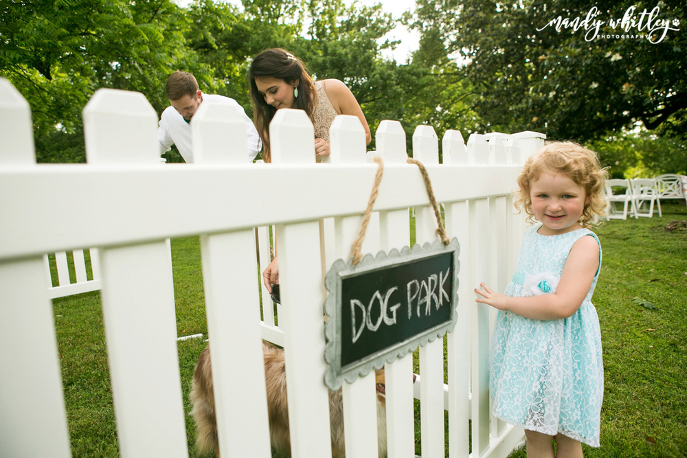 Nashville Wedding and Pet Photographer | Mandy Whitley Photography