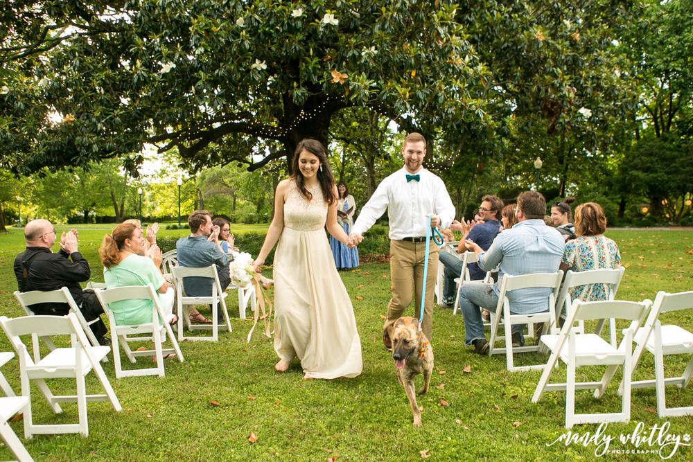 wedding inspiration weddings with dogs