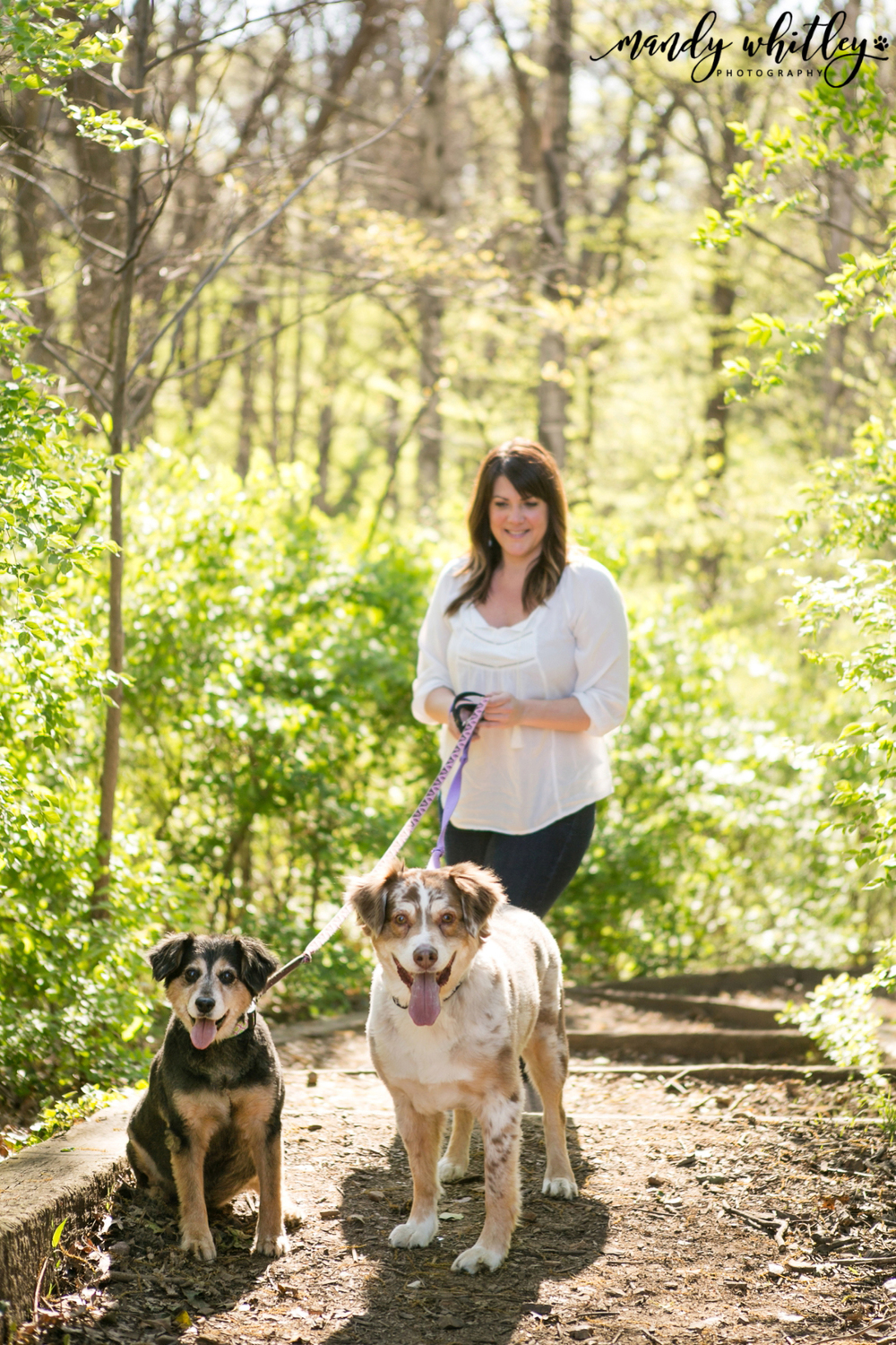 Pet and Portrait Photographer in Nashville Mandy Whitley Photography