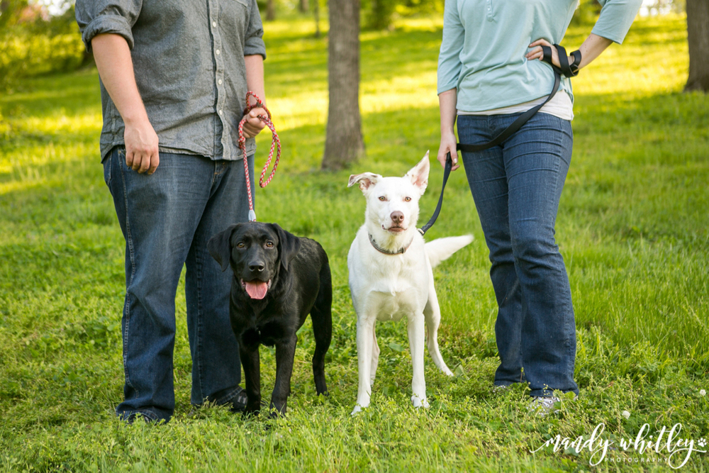 Nashville Family Photographer Mandy Whitley Photography