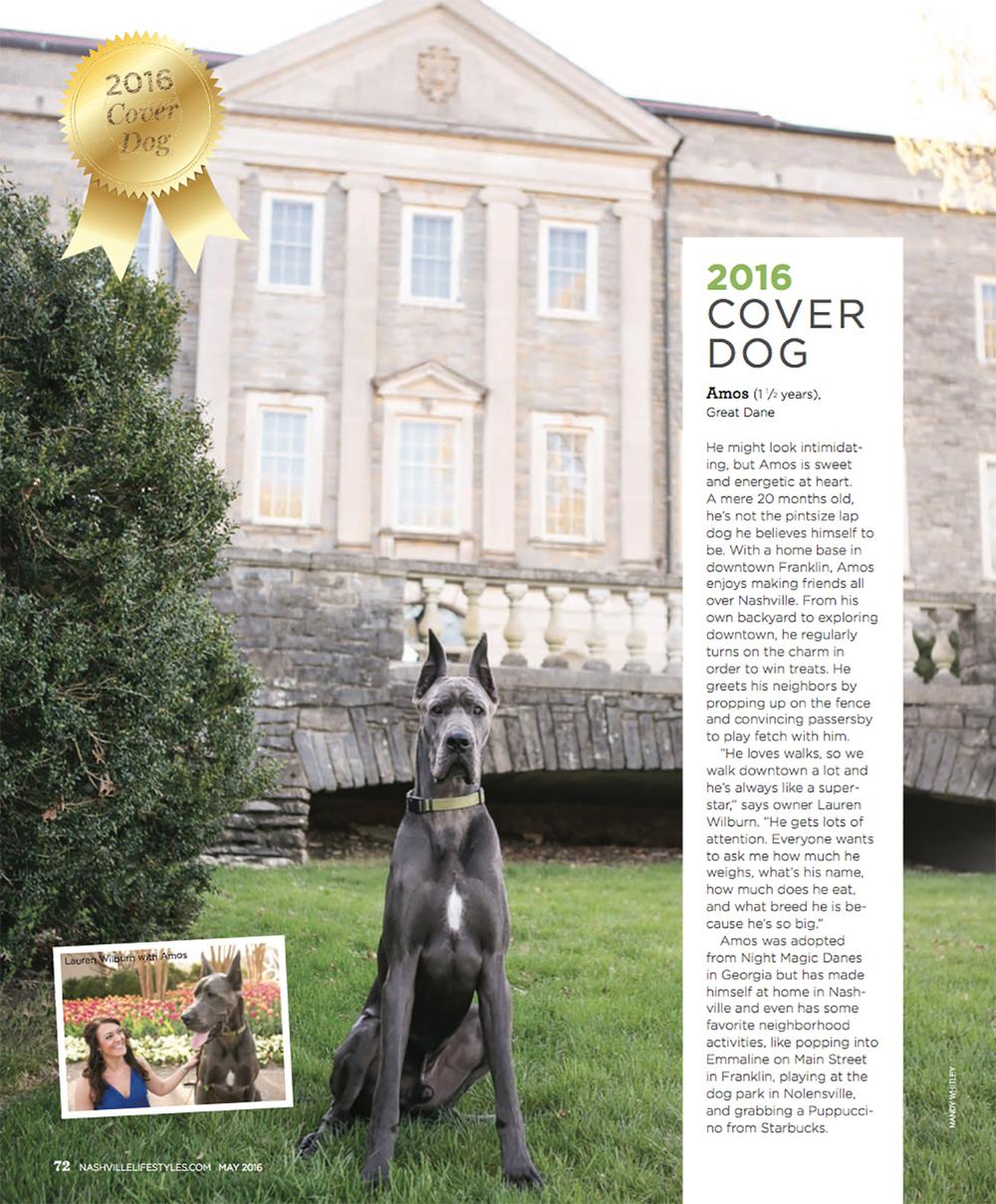 Nashville Lifestyles Dog Cover | Pet Photographer