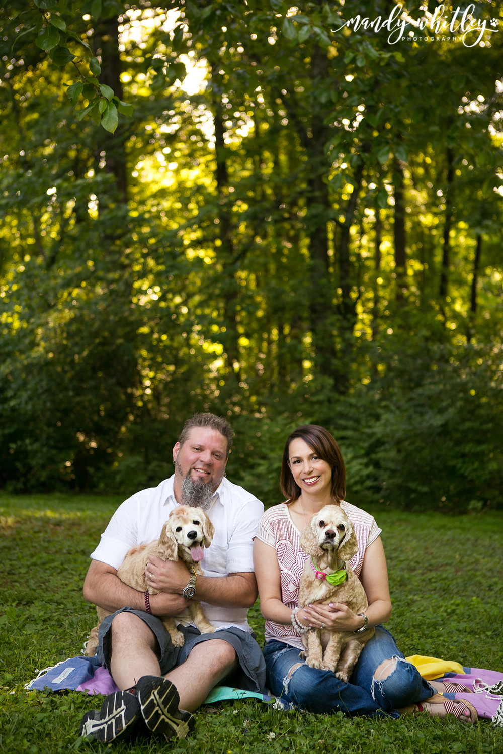 Pet Photography in Nashville Tennessee Mandy Whitley