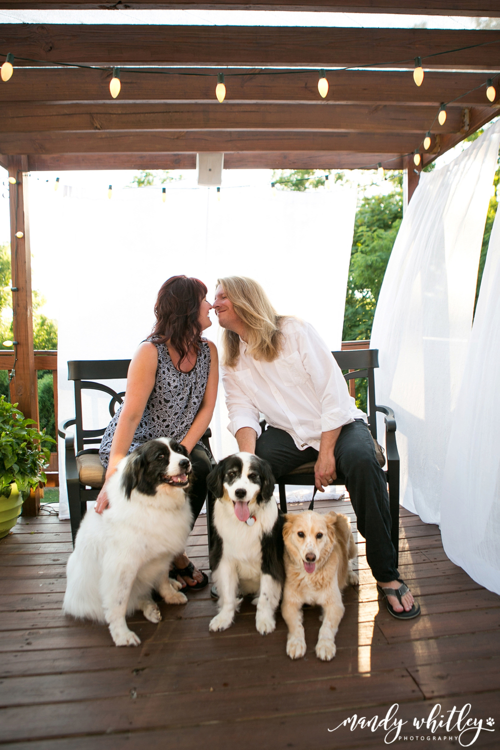 Nashville Pet Photographer Nashville Dog Photographer