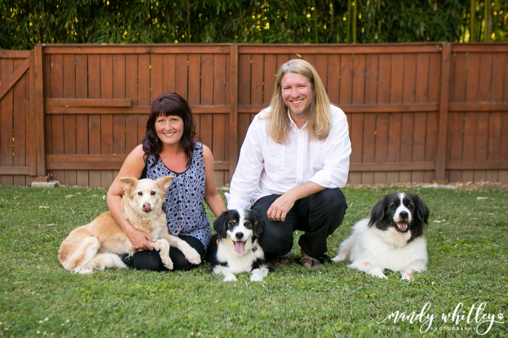 Dog Photographer in Nashville Pet Photographer