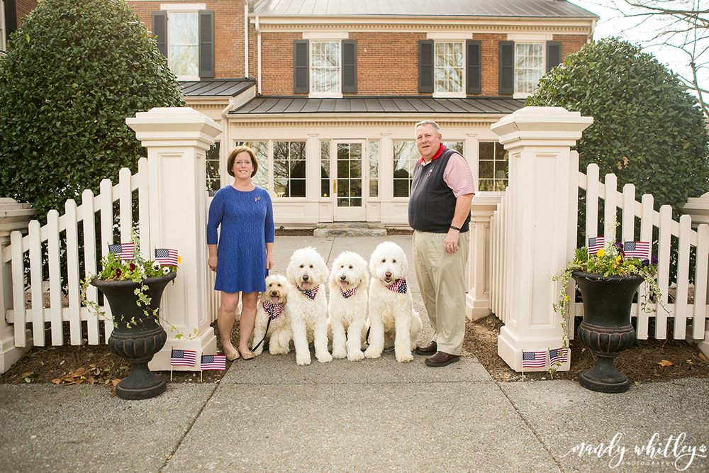 nashville pet photographer dog photographer
