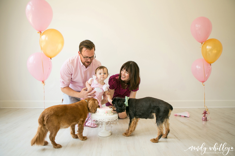 Pet Photographer in Nashville Pets and Their People