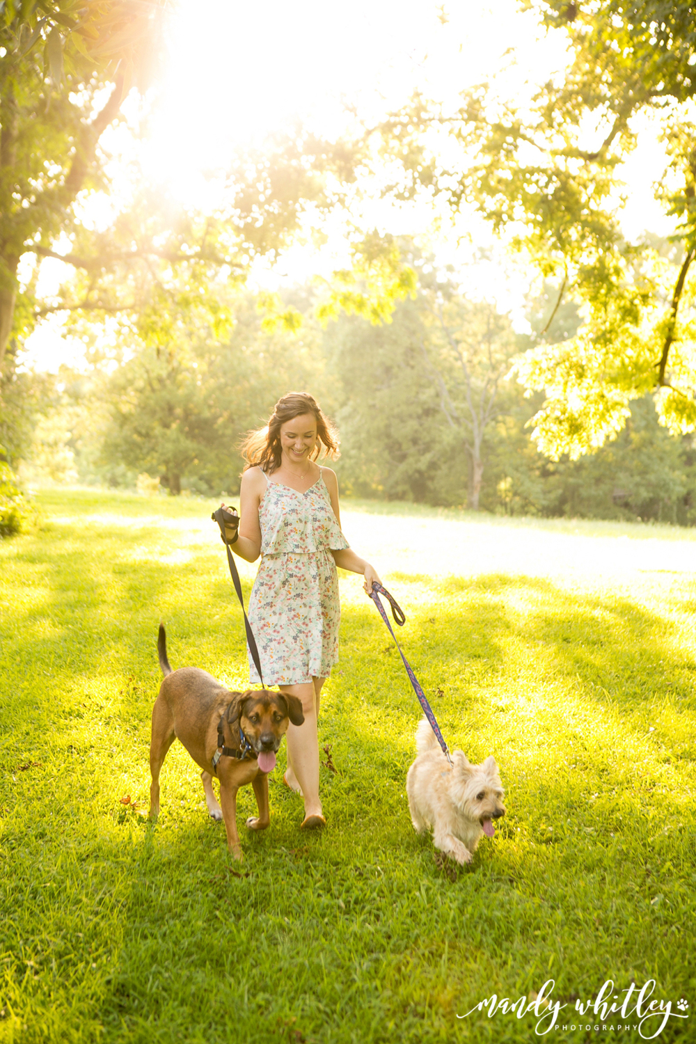 Nashville Dog Photographer Mandy Whitley