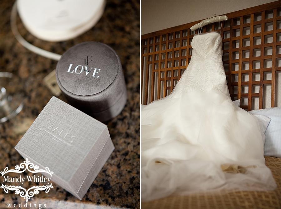 Asheville Wedding Photographer at Grove Park Inn